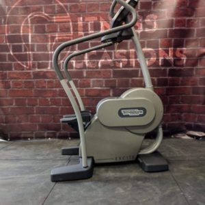 Technogym Excite Step Silver